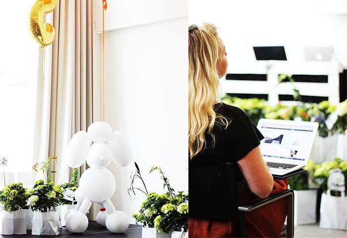 Meet The Blogger 2015 1