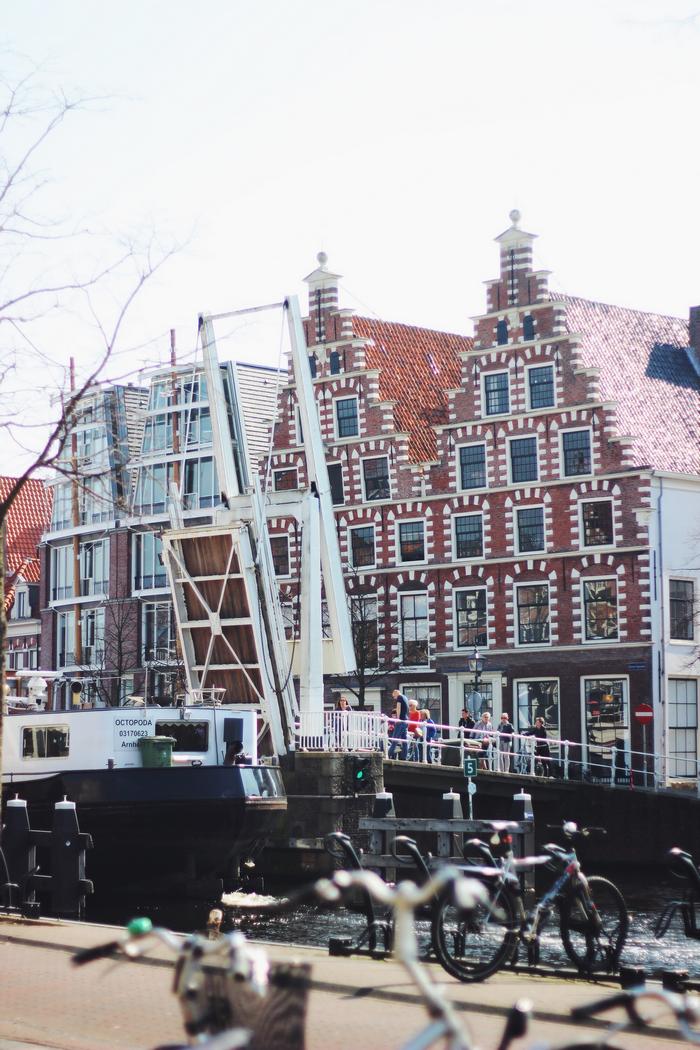 Haarlem header