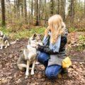 huskytocht limburg lowland pack ervaring