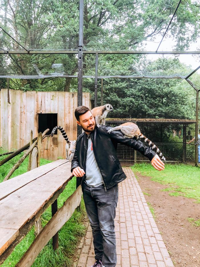 zoo veldhoven papegaaienpark veldhoven ervaring